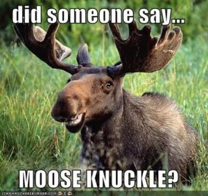 moose-knuckle-moose-smile